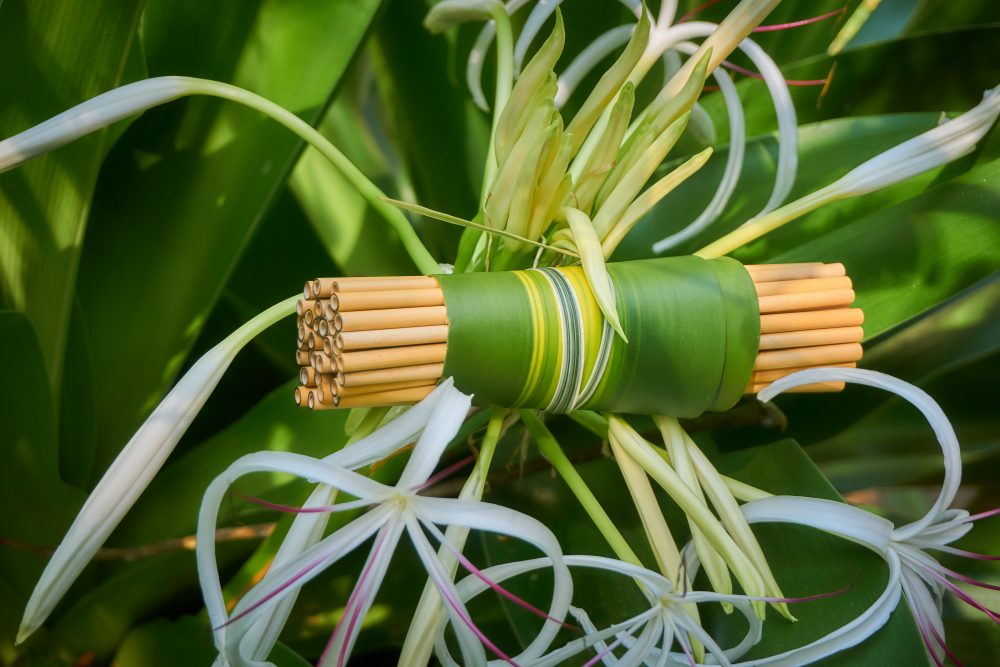 A pack of bamboo straws entangled in a tropical flower